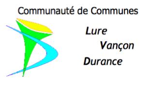 Logo CCLVD